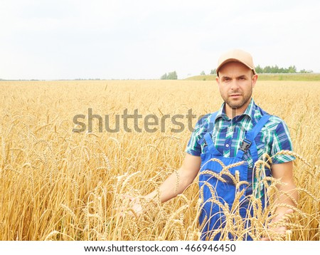 Farmer in a plaid shirt controlled his field.. Shows the wheat harvest. Agriculture. #466946450