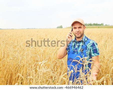 Farmer in a plaid shirt controlled his field. Talking on the phone. Wheat harvest. Agriculture. #466946462
