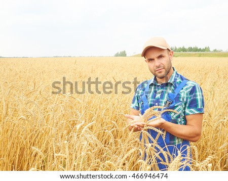 Farmer in a plaid shirt controlled his field.. Shows the wheat harvest. Agriculture. #466946474
