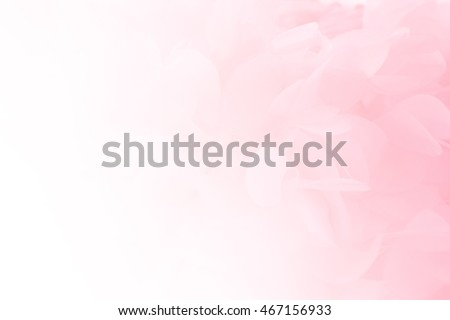 Soft pink pastels background, wedding, anniversary, valentines theme and concept Royalty-Free Stock Photo #467156933