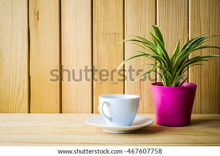 Indoor plant on wooden table and white wall #467607758