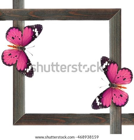 Wooden blank picture ( photo) frame with butterflies (copy space for photo, picture or text). Artistic background. Isolated on white