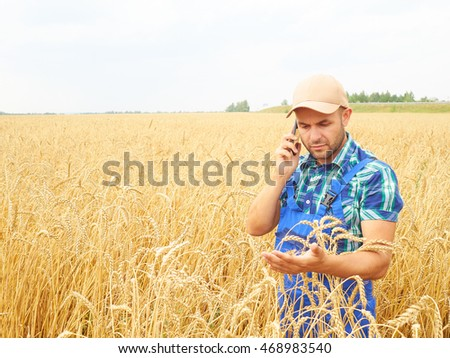 Farmer in a plaid shirt controlled his field. Talking on the phone. Wheat harvest. Agriculture. #468983540