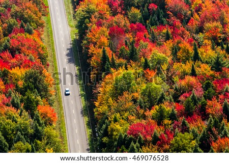 Aerial view of a car driving on a country road through a colorful forest at fall. Quebec, Canada.