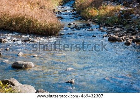 River Stones in river with dry grass in autumn. #469432307