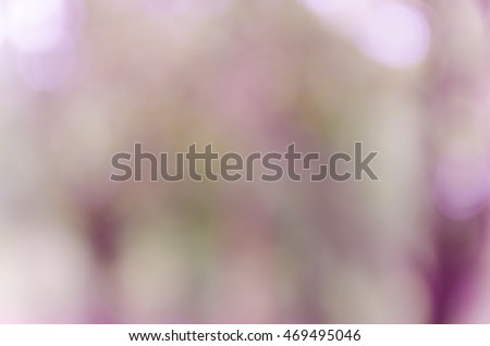 bokeh background with abstract blurred foliage and bright summer sunlight #469495046