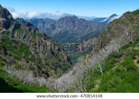Hiking Pico do Arierio, Pico Ruivo, Madeira, Portugal.   #470854148