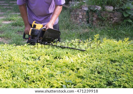 the man cut small tree with electric  saw #471239918