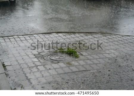 summer rain #471495650