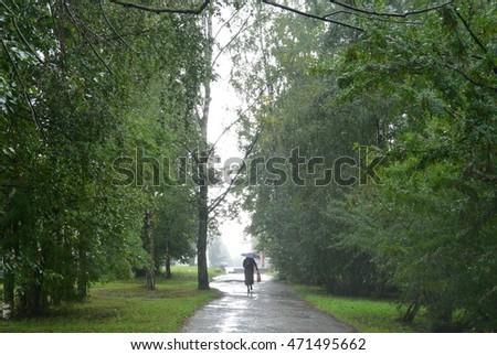summer rain #471495662