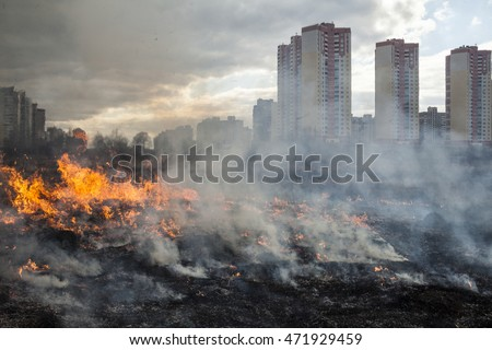 Fire in the field near the city (Kyiv, Ukraine). Royalty-Free Stock Photo #471929459