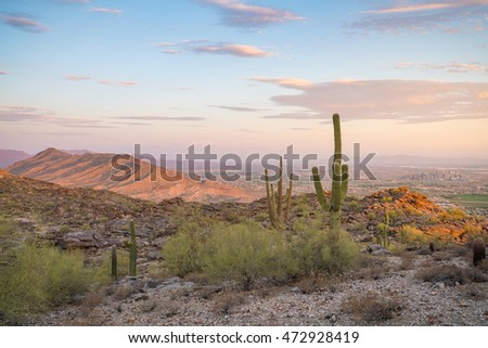View of  Saguaro cactus and downtown Phoenix Arizona at sunrise #472928419