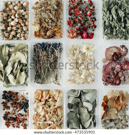 Assortment of dried flowers, leaves and petals in boxes on white. flat lay, top view #473535901