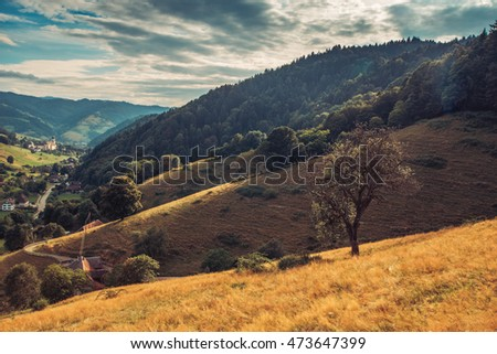 Scenic autumn countryside landscape. Mountain valley with forests, fields and old houses in Germany, Black Forest #473647399