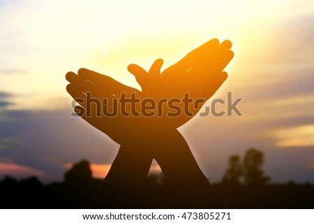 silhouette hand people resemble bird flying in the sunset  #473805271