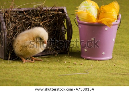 Christmas Chicken #47388154