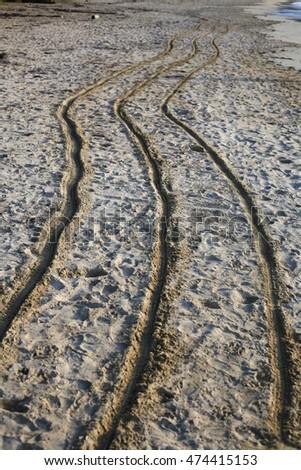 triple marks on the sand on beach #474415153