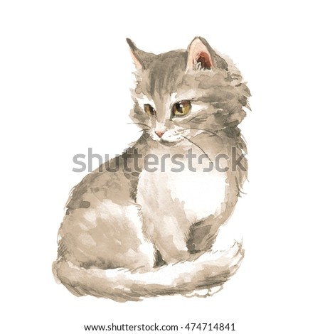 Cat 1. Gray fluffy kitten, isolated on white. Watercolor painting
