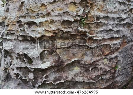 Stone texture background  #476264995