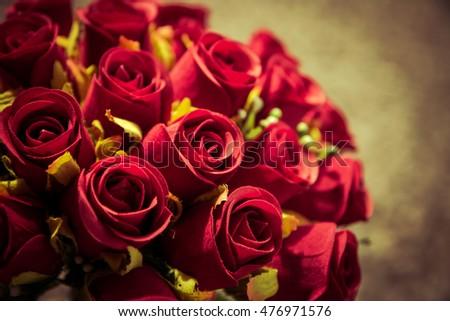 Close up rose flower on vintage-retro color #476971576