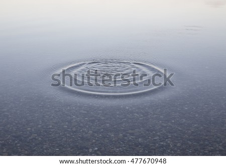 water surface of a lake with concentric ripples  #477670948