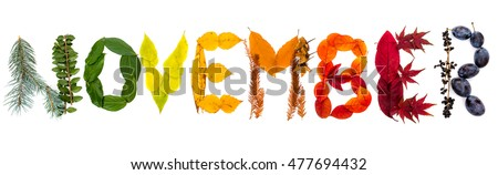 """Sign """"November"""" made of autumnal natural objects. Colorful leaves and mushrooms arranged into the """"November"""" text. Autumnal mood. Royalty-Free Stock Photo #477694432"""