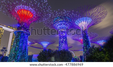 Singapore August 29,2016 - Supertree Rhapsody show at Gardens by the Bay #477886969