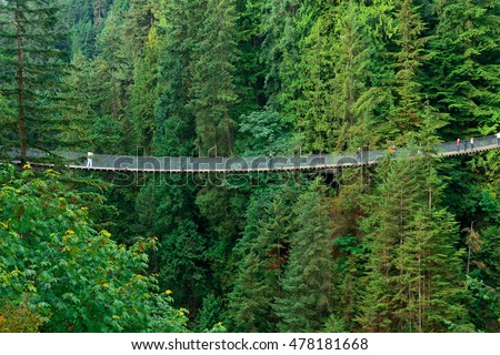 Capilano Suspension Bridge in Vancouver, Canada. Royalty-Free Stock Photo #478181668