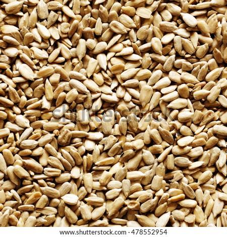 Sunflower seeds #478552954