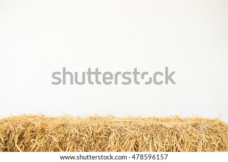 a pile of straw on a white background #478596157