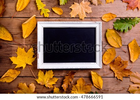 Autumn leaf composition with picture frame. Copy space.