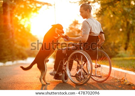 Happy man with his dog at sunset. A guy in a wheelchair. Royalty-Free Stock Photo #478702096