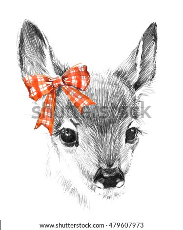Cute deer. pencil sketch of fawn. Animal illustration. T-shirt design.