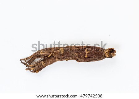 ginseng root isolated on white background #479742508