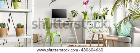 Bright interior full of flowers #480604660