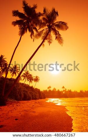 Sunset on tropical beach #480667267