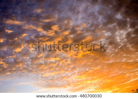 Cloudscape, Colored Clouds at Sunset near the Ocean #480700030