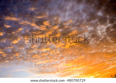 Cloudscape, Colored Clouds at Sunset near the Ocean #480700729
