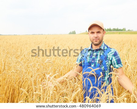Farmer in a plaid shirt controlled his field.. Shows the wheat harvest. Agriculture. #480964069