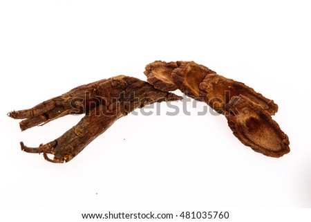 Sliced ginseng on white background #481035760
