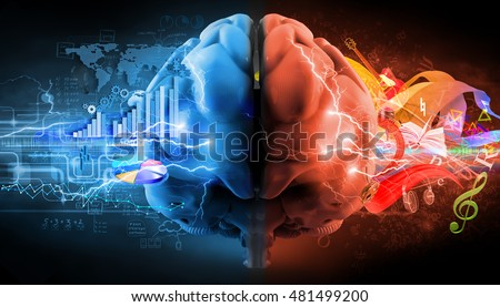 left and right brain functions; 3d illustration