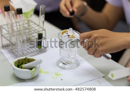 Chromatography is used to separate components of a plant #482574808