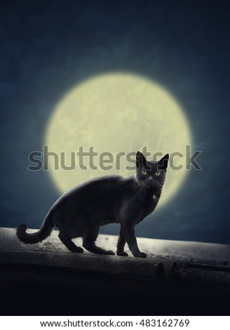 Black cat on the roof and full evil moon. Halloween design poster.