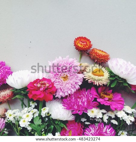 beautiful autumn colors. asters, dahlia, chamomile, dried flowers. Space for text. vintage photo on the phone. light background with summer flowers #483423274