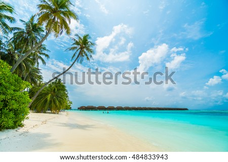 Beautiful tropical Maldives island with beach , sea , and coconut palm tree on blue sky for nature holiday vacation background concept -Boost up color Processing #484833943