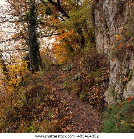 Narrow trail between trees, rocks and abyss. Autumn landscape in warm colors. #485464852