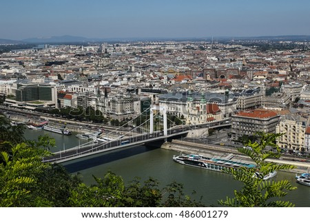 Budapest skyline with the Danube River and Elizabeth Bridge #486001279