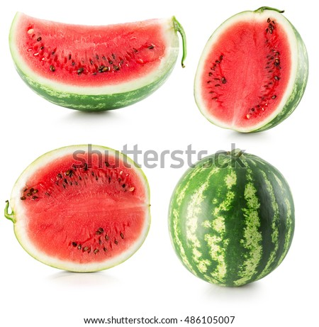 collection of watermelon isolated on the white background #486105007