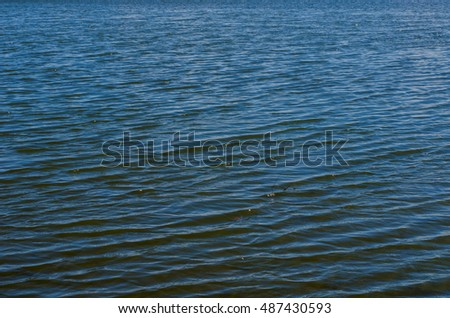 Rippled blue water of a shallow pond or river #487430593