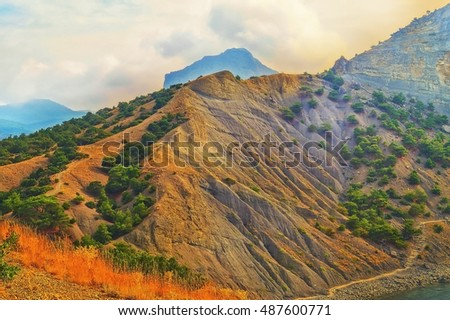 The mountain slopes which are growing evergreen trees and morning sun shines #487600771